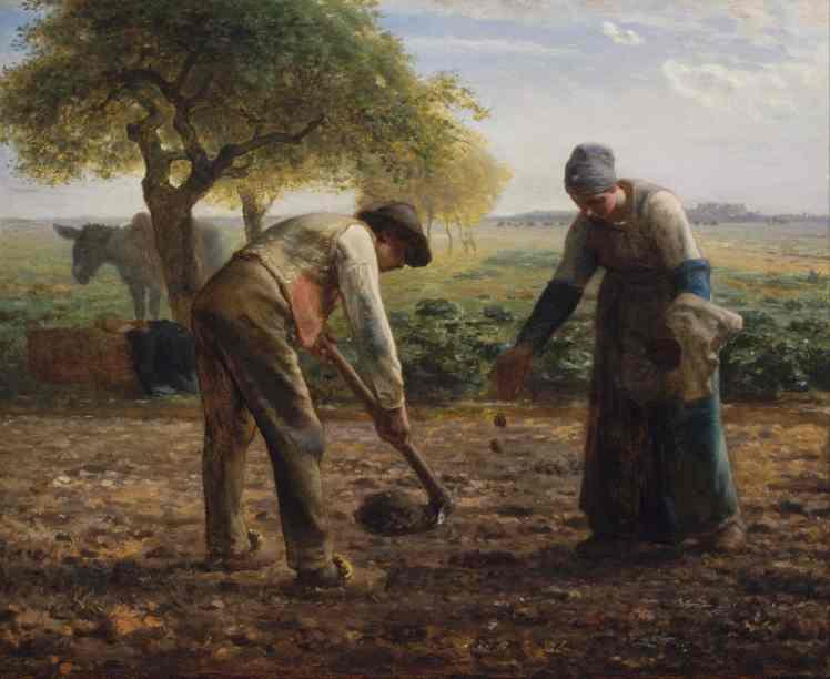 1861-Potato Planters.jpg